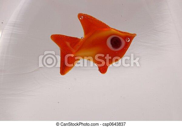 Glass Fish - csp0643837
