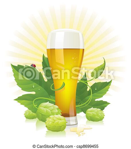 Glass of beer, hop and leaves - csp8699455