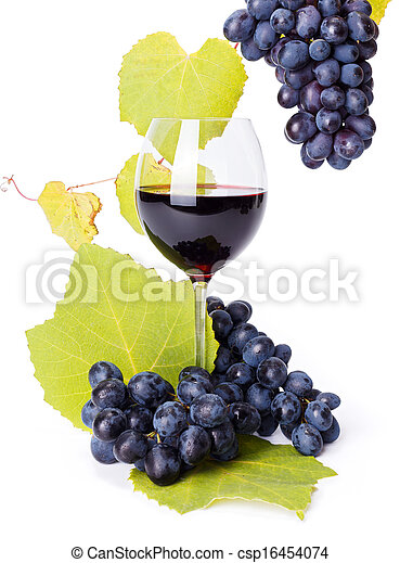 Glass of red wine with blue grape clusters - csp16454074