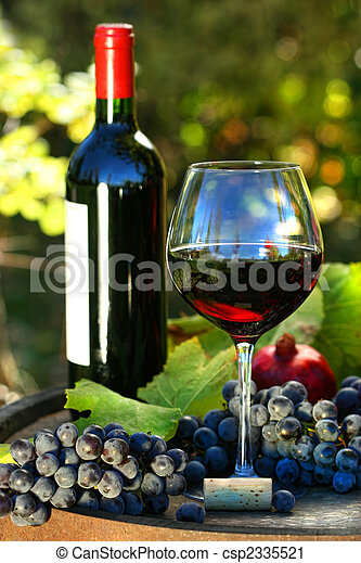Glass of red wine with bottle and grapes - csp2335521