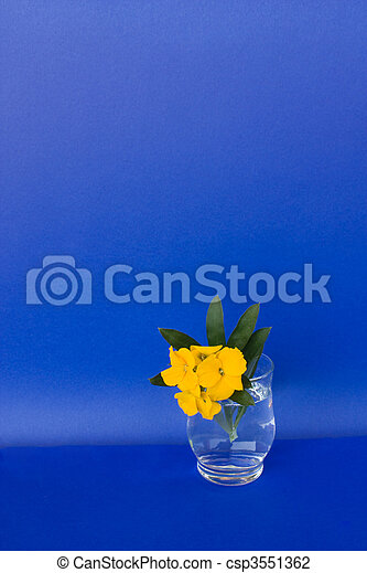 Glass With Flowers On Blue Background - csp3551362