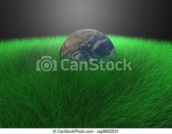 globe in grass - csp9852531