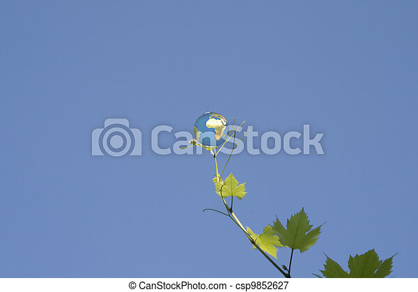 globe on vine leaf - csp9852627