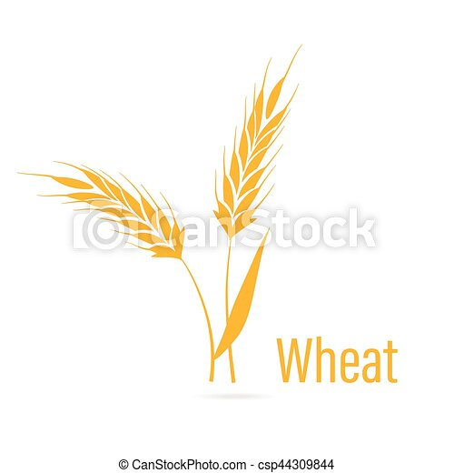 Gluten free icon  Ears of Wheat