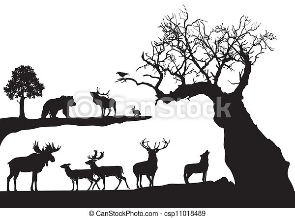 gnarled tree with wildlife isolated - csp11018489