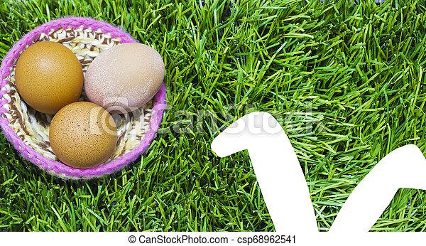 gniazdo, królik, ears., trawa, pisanki - csp68962541
