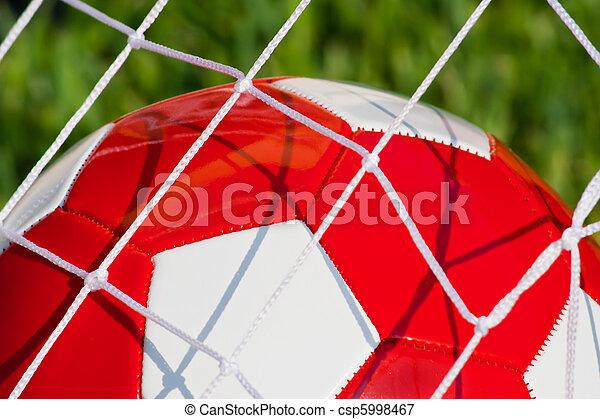 goal!!! - csp5998467