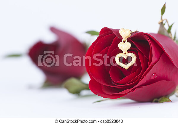 Gold heart pendant and red rose on white background stock gold heart pendant and red rose on white background stock photo mozeypictures Image collections