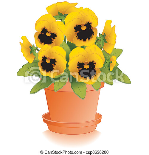 Gold Pansy Flowers, Clay Flowerpot - csp8638200