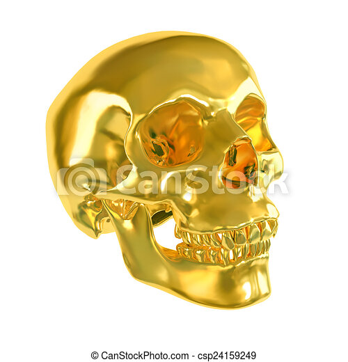 Gold skull isolated on white background. - csp24159249