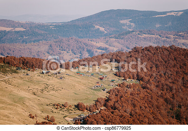 golden autumn forest scenery - csp86779925