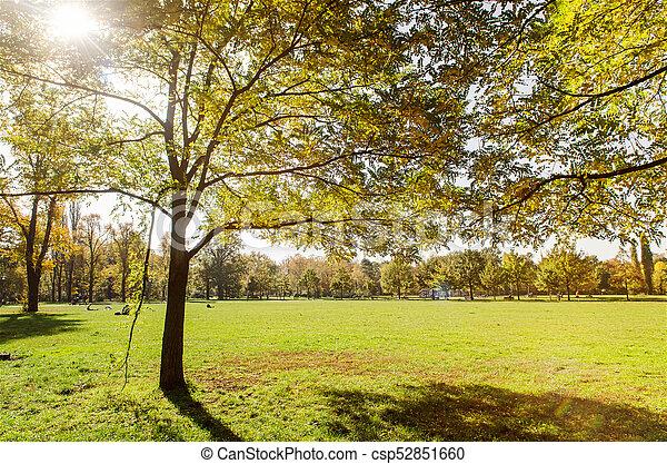 golden autumn in a park - csp52851660