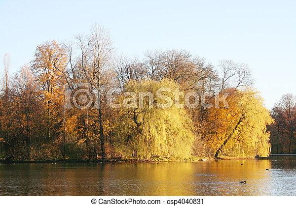 golden autumn - csp4040831