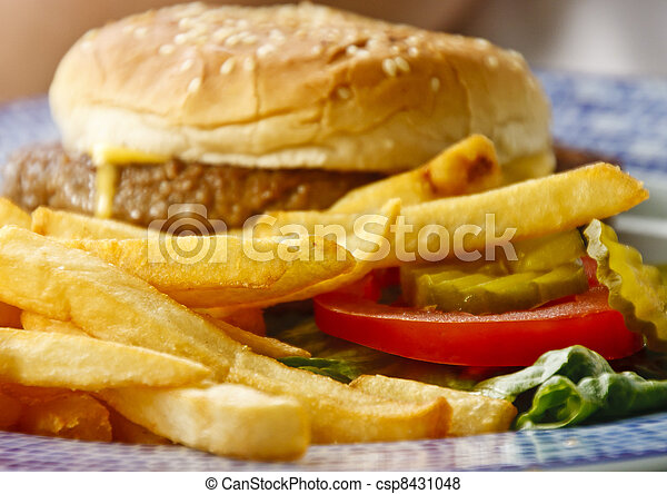 Golden French Fries with Cheeseburger in Background - csp8431048