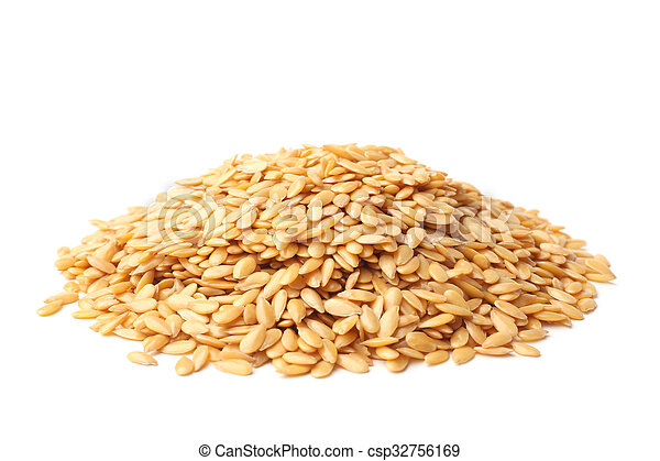 Golden linseed - csp32756169