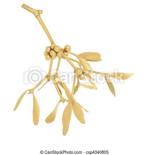 Golden Mistletoe - csp4340805