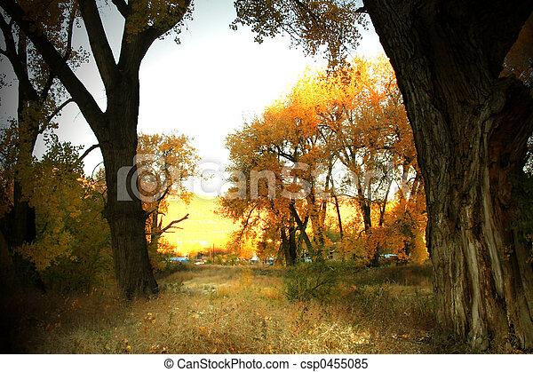 Golden Morning - csp0455085