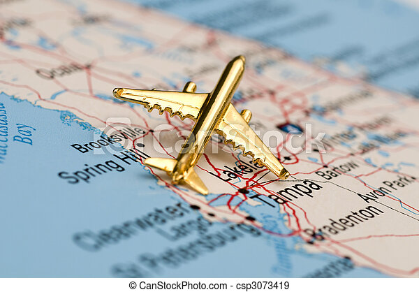 Golden Plane Over Florida