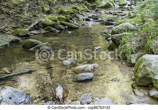 golden reflection in clear water between stones in Lierbach river-bed in woods of Black Forest, near Allerheiligen, Germany - csp86763143