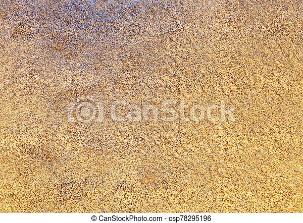 Golden Texture Background Watercolor Paper Painted In Gold Paint Watercolor Paper Texture Canstock