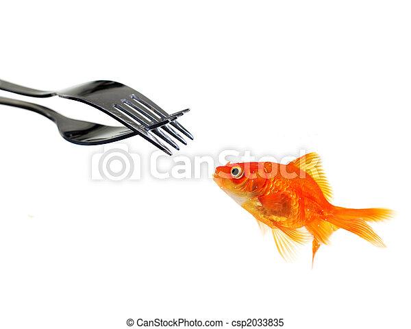 goldfisch, flachdrehen, ledig, gabeln - csp2033835