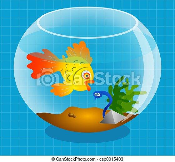 Goldfish - csp0015403
