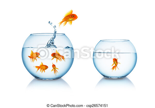 goldfish escapes in a fishbowl - csp26574151