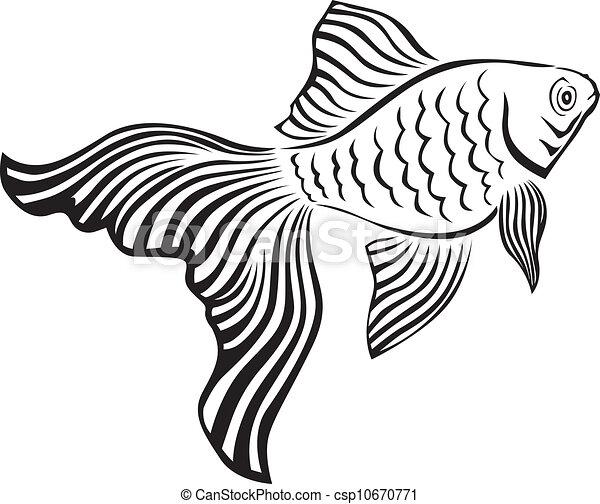 goldfish csp10670771