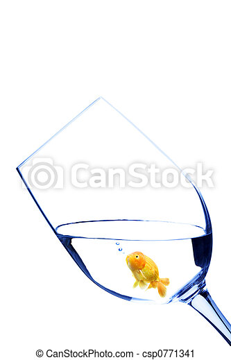 Goldfish in a glass - csp0771341