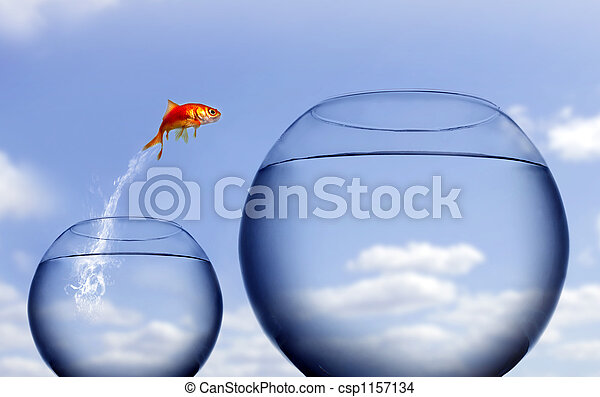goldfish jumping out of the water - csp1157134