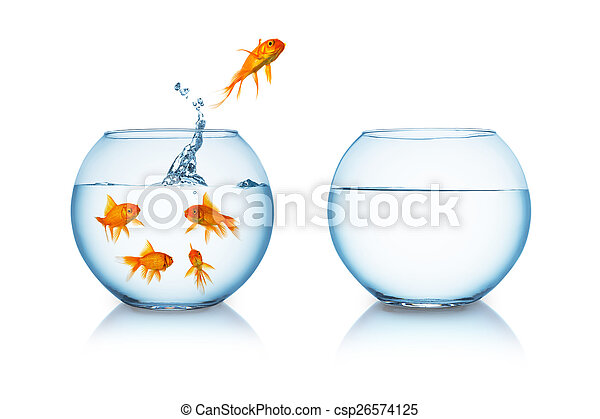 Goldfish jumps in to liberty - csp26574125