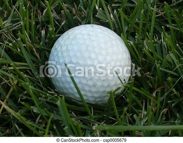 Golf Anyone? - csp0005679