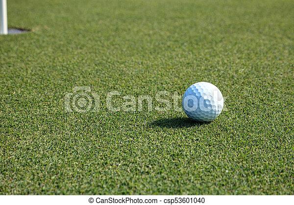 Golf ball and flag on Lush green grass - csp53601040