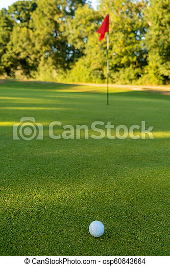 Golf Ball and Flag on the Green of a Golf Course - csp60843664