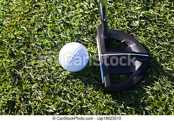 Golf ball and putter on the green - csp18623510