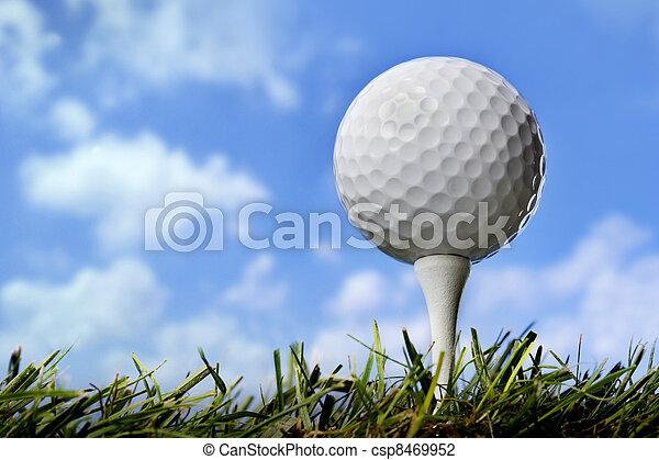Golf ball in grass, close up - csp8469952
