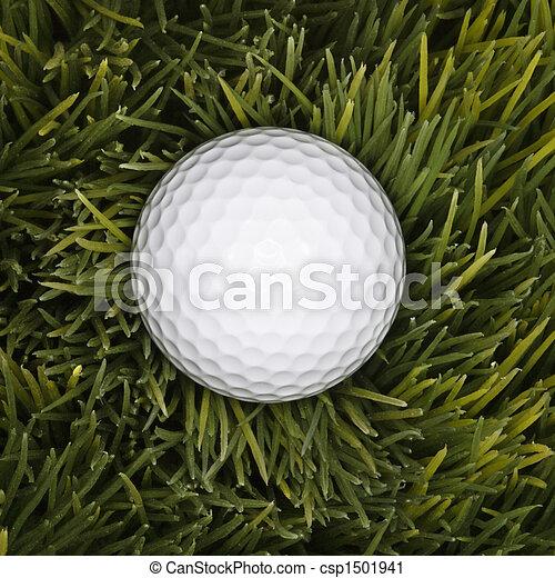Golf ball in grass. - csp1501941