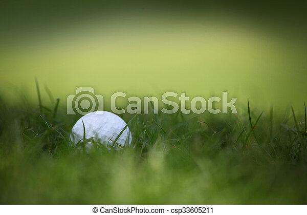 Golf ball in grass - csp33605211