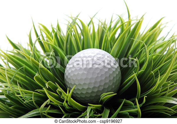 Golf ball in grass - csp9196927