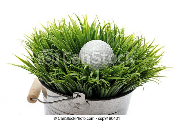Golf ball in grass - csp9198481