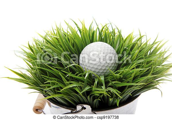 Golf ball in grass - csp9197738