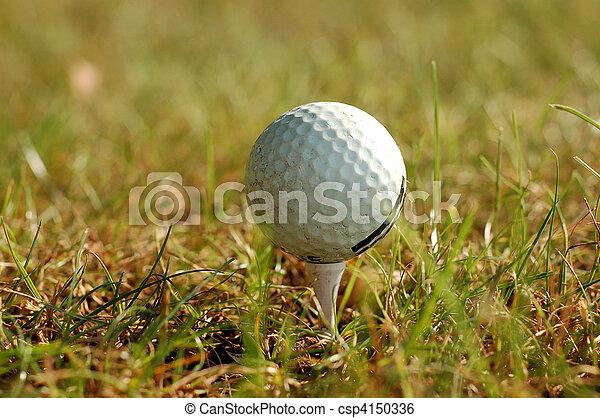 golf ball in grass - csp4150336