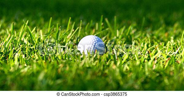 golf ball in grass - csp3865375