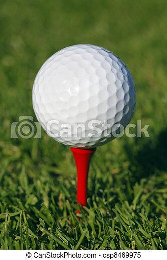 Golf ball in grass - csp8469975