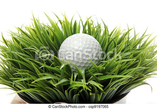 Golf ball in grass - csp9197065