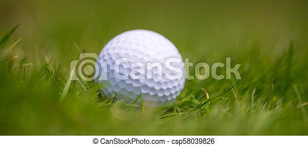 Golf ball in grass - csp58039826