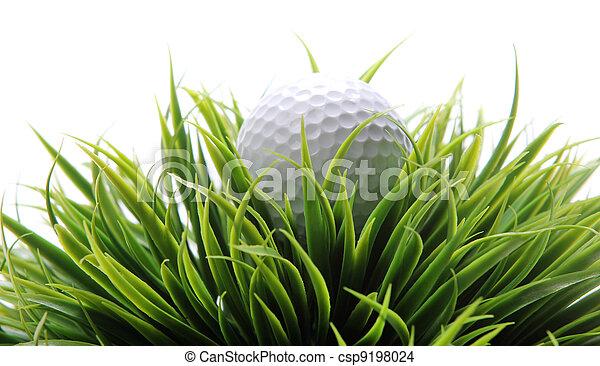 Golf ball in grass - csp9198024