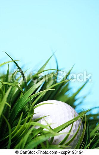 Golf ball in grass - csp9198194