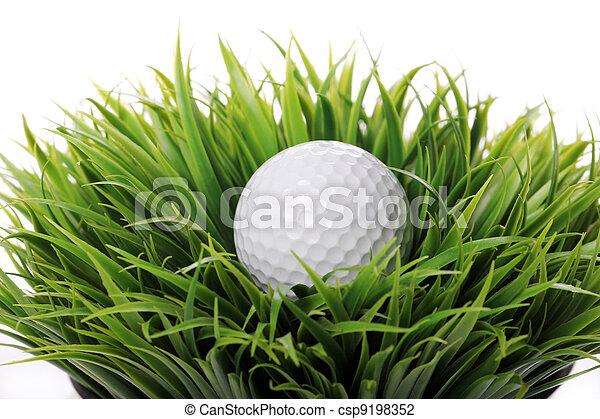 Golf ball in grass - csp9198352