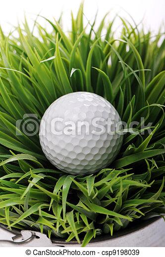 Golf ball in grass - csp9198039